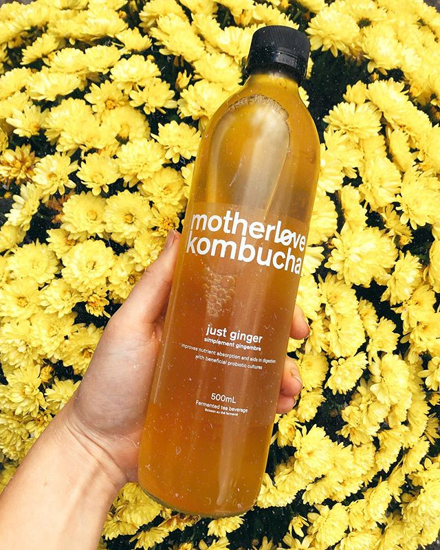 We love carrying @motherlovekombucha 💛 what's your favourite flavour?