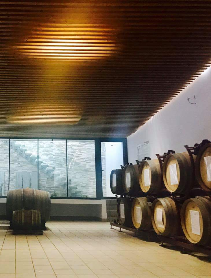 Read all about our New Eco Winery -