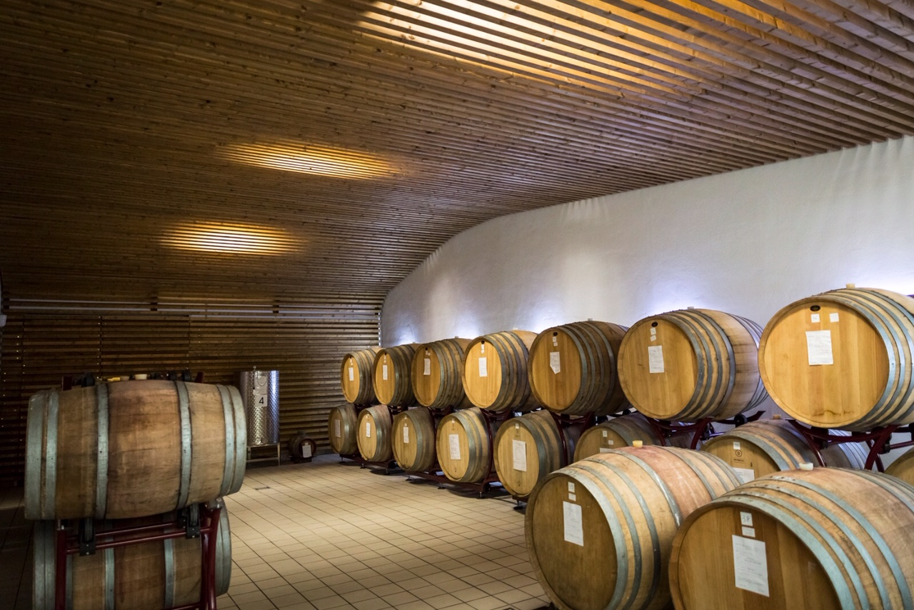 Oak Barrels at Palazzo Tronconi Winery photo @Marco Reali