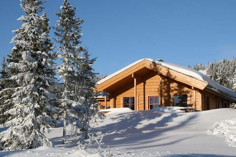 There are cabins for big groups and smaller cabins for families.  Sjusjøen Hytteutleie .