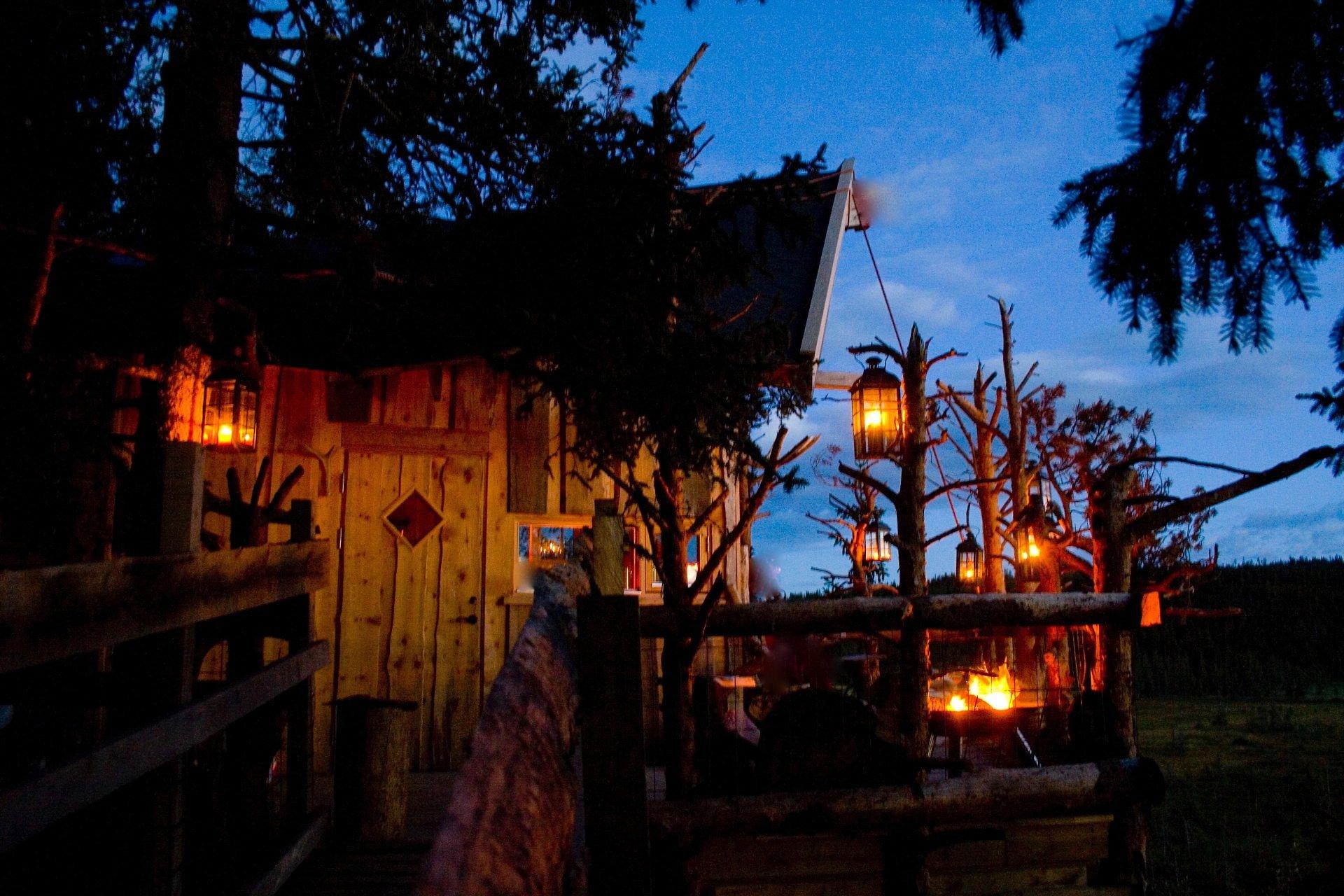 Tree top huts in Brumunddal