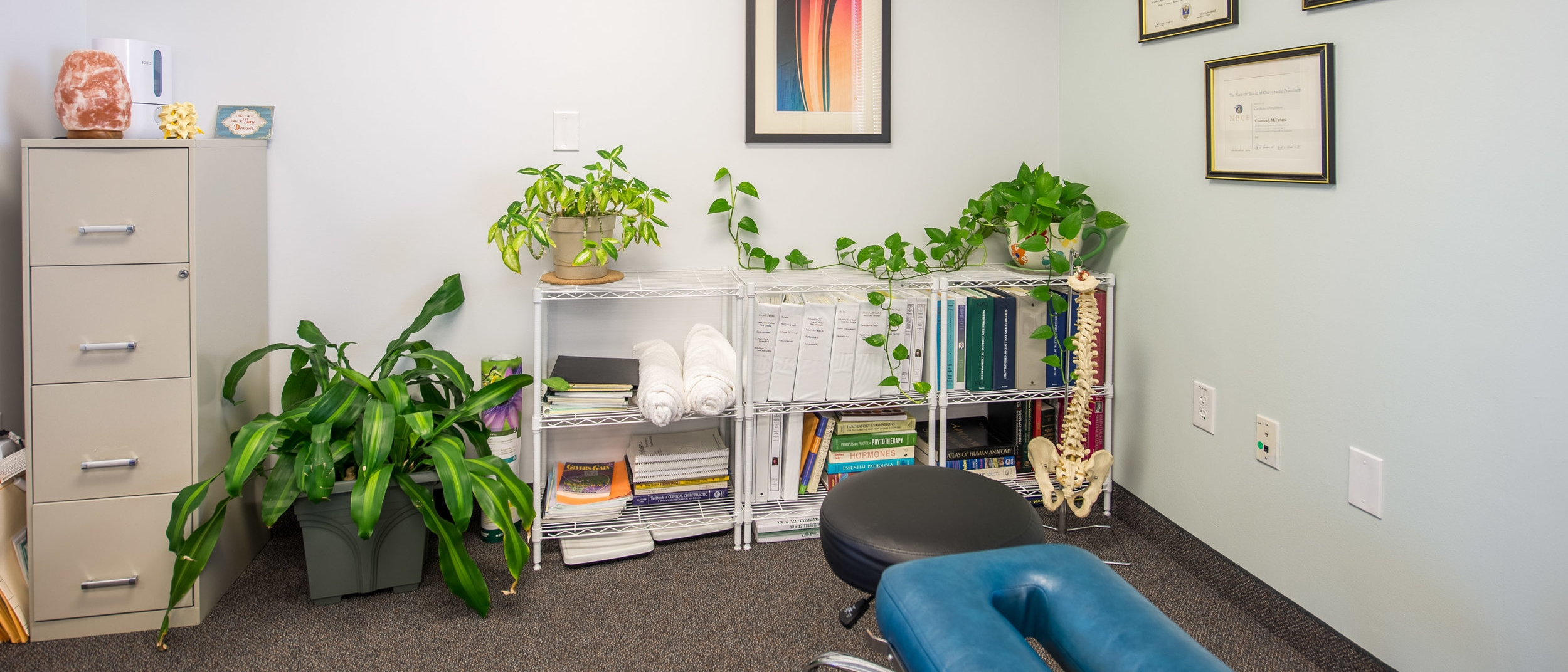 chiropractor office space