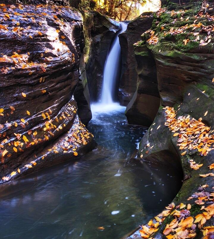 Autumn Robinson Falls.jpg
