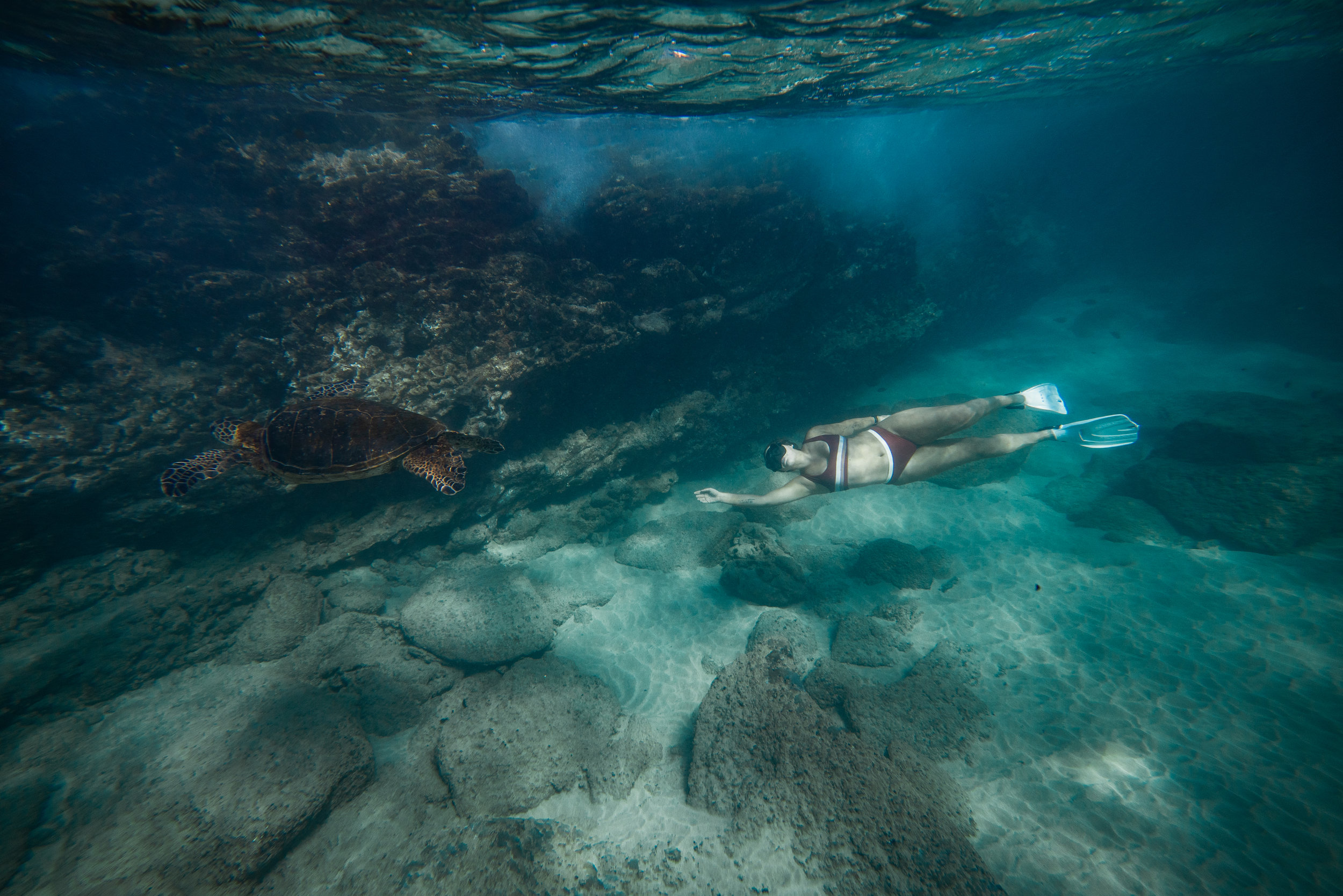 freediving in maui