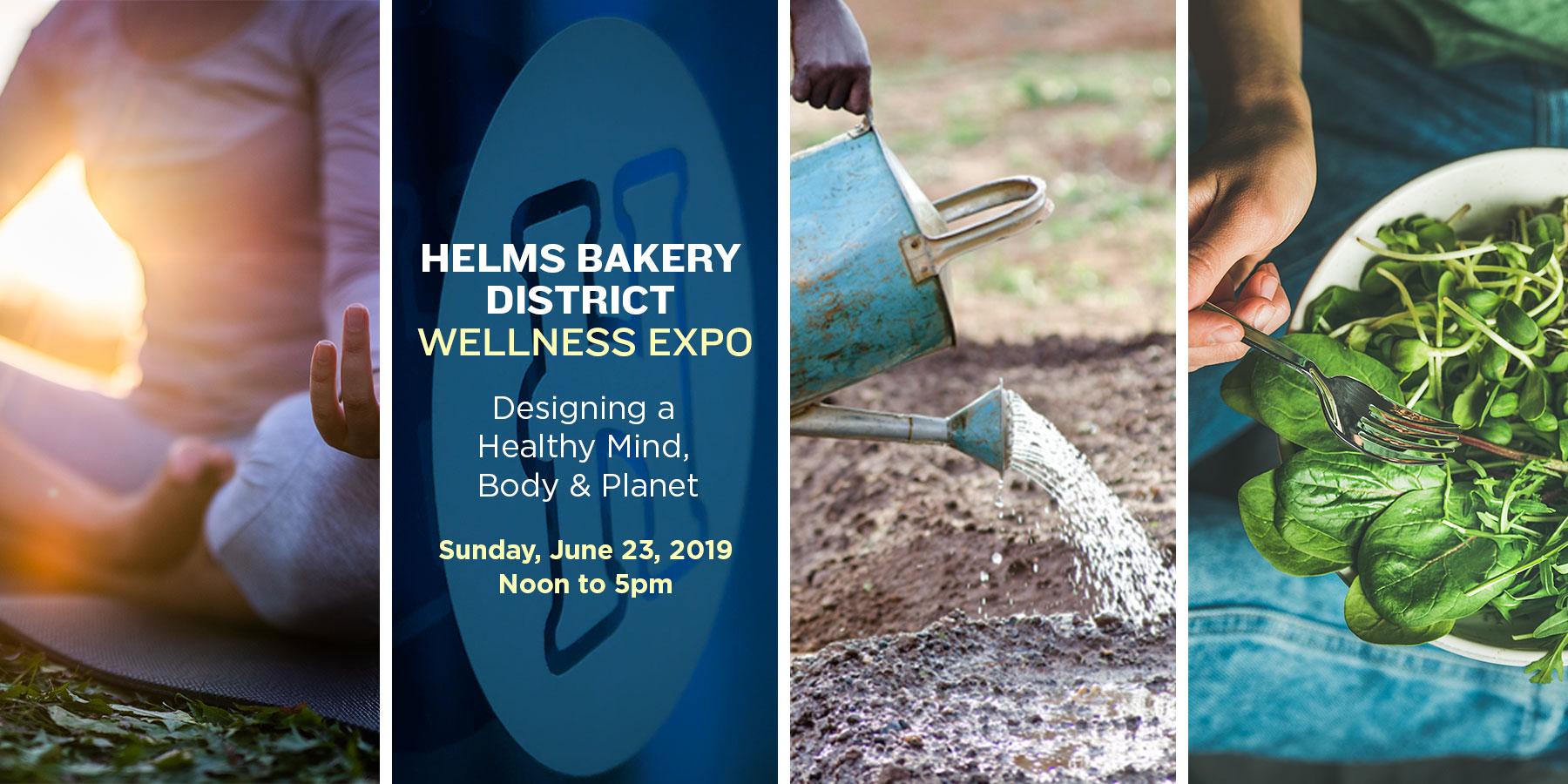 HELMS_Home_Slider_Wellness-1.jpg