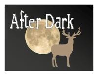 After Dark Slide.jpg
