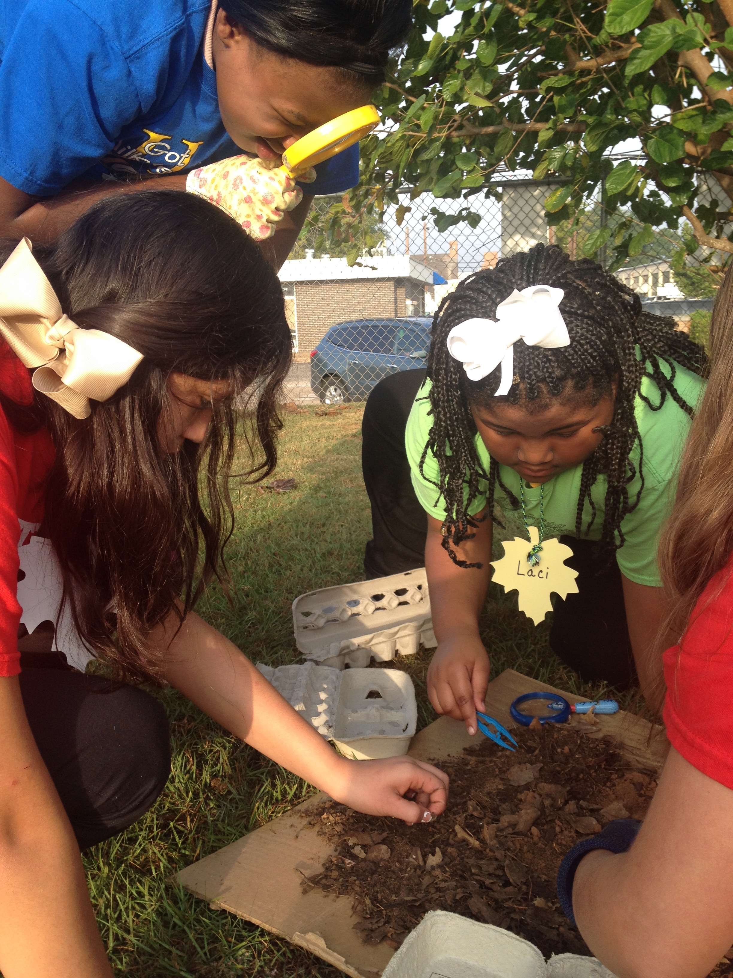 3rd FBI (Fungi, Bacteria and Invertebrate) Agents investigate the soil for organic and inorganic matter.