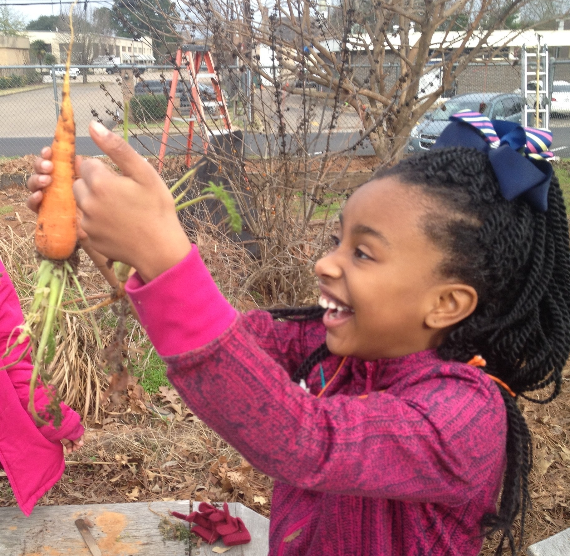 3rd grade Garden Bud marvels in her first carrot harvest.