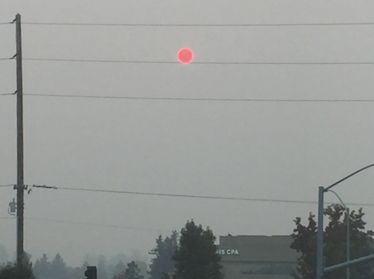 The sun above Lucia's hometown of Petaluma, California, shining through smoky skies from the wildfires.