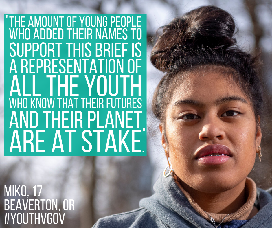 The amount of young people who added their names to support this brief is a representation of all the youth who know that their futures and their planet are at stake.png