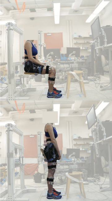 Muscle activations and ground reaction forces measured for both sitting and standing postures to identify the ideal posture for deskbound workers with low back pain.  Image source:  https://www.tandfonline.com/doi/abs/10.1080/00140139.2019.1577496?journalCode=terg20