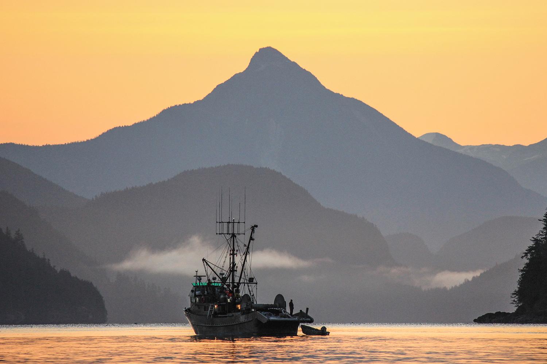 YinYang-Fishing4-BCSalmon.jpg