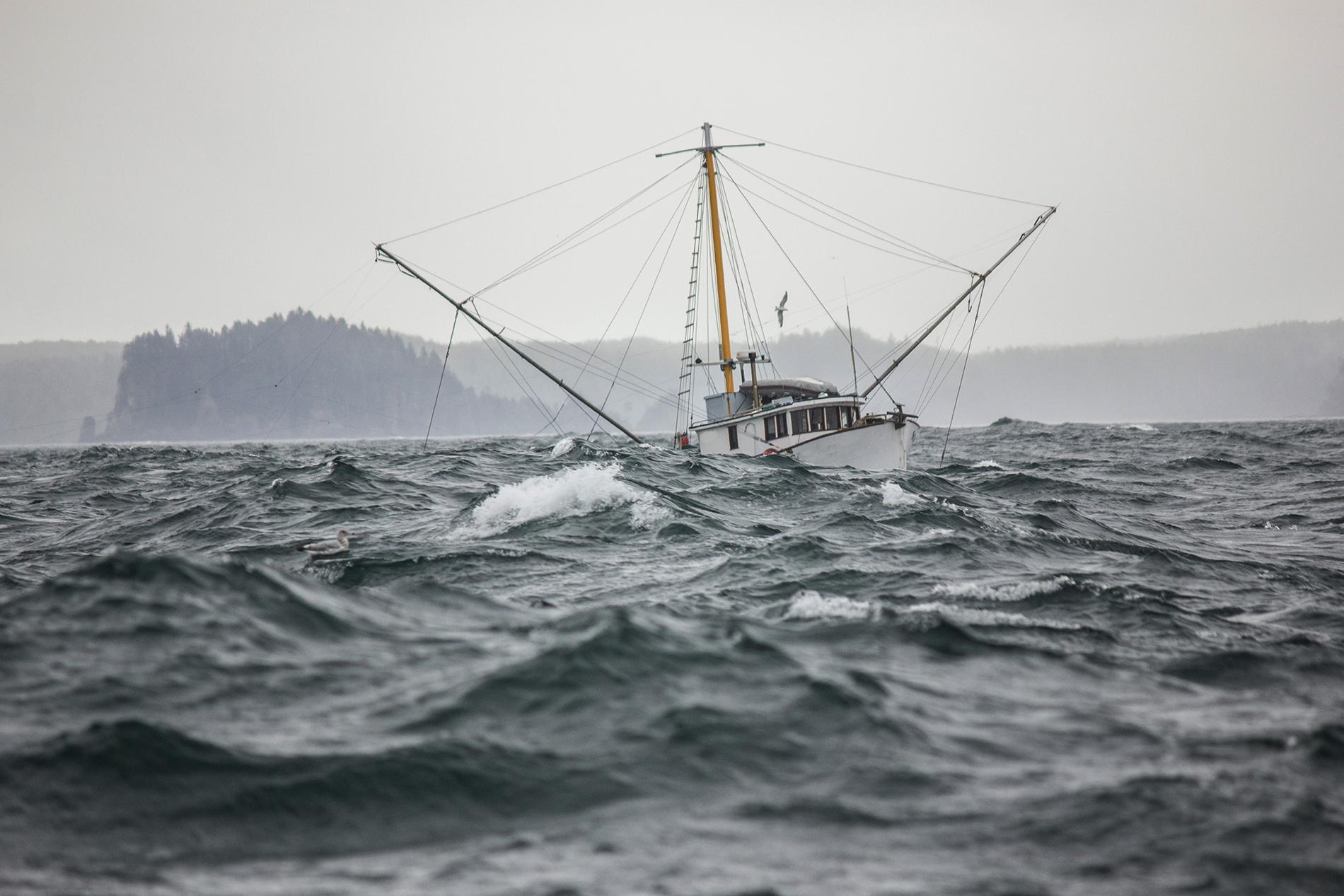 Salmon-Trolling-boat.jpg