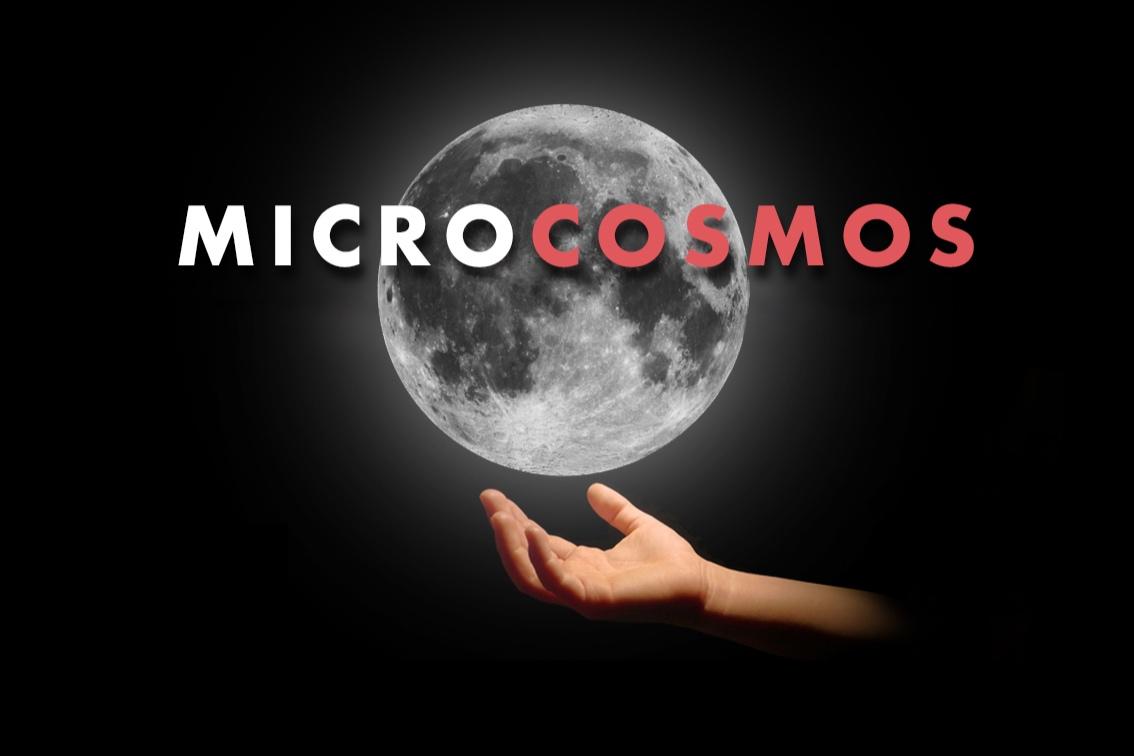 microcosmos.jpg