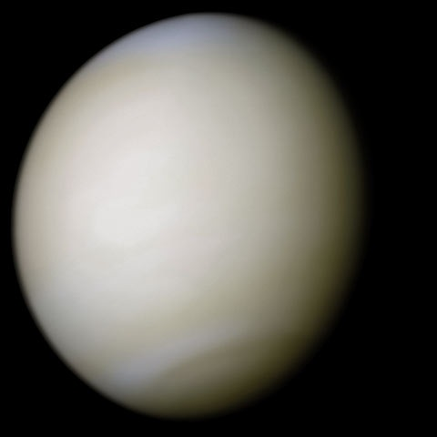 A real-colour image of Venus taken by   Mariner 10   processed from two filters. The surface is obscured by thick  sulfuric acid  clouds.