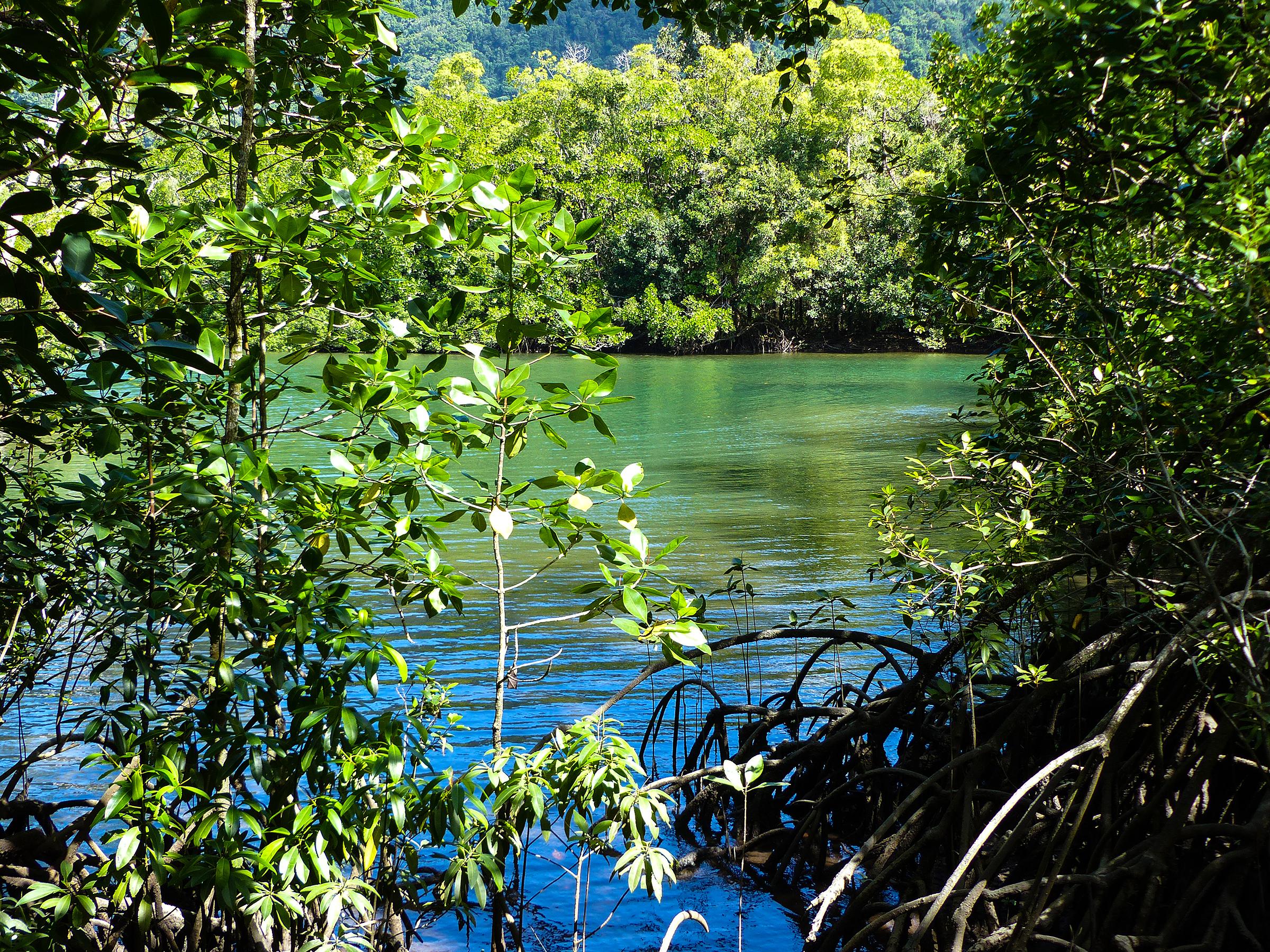 waterways -
