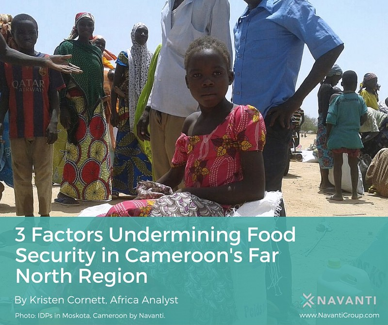 3 Factors Undermining Food Security in Cameroon's Far North Region