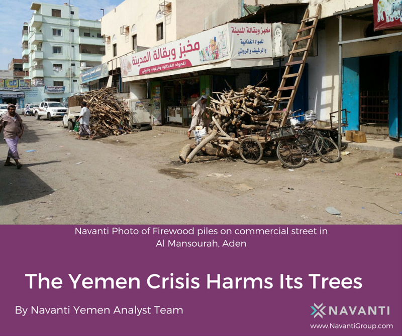 Firewood Pilse on Commercial Street in Al Mansourah, Aden