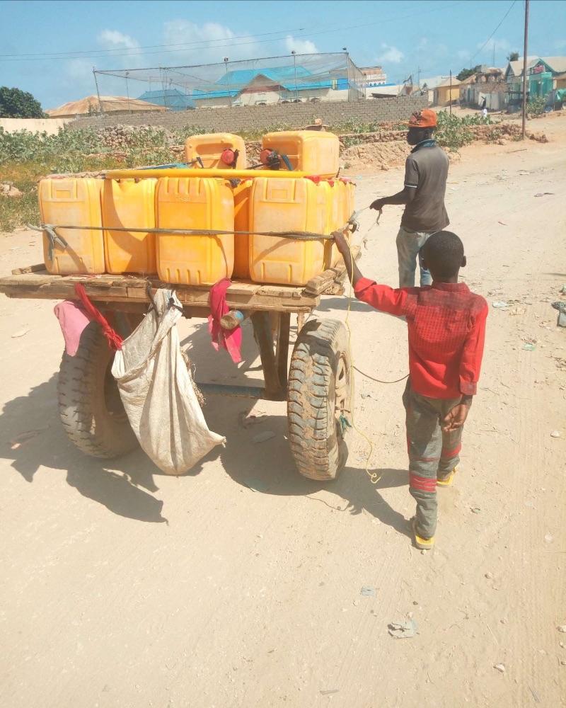 Donkey cart selling water in Kismayo, Somalia. Source: Navanti