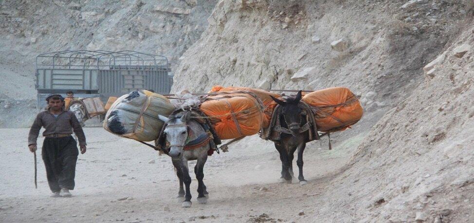 Kolber with donkeys. Source: Kurdistan Human Rights Network