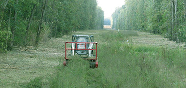 right-of-way-easement-land-clearing-management-service-company