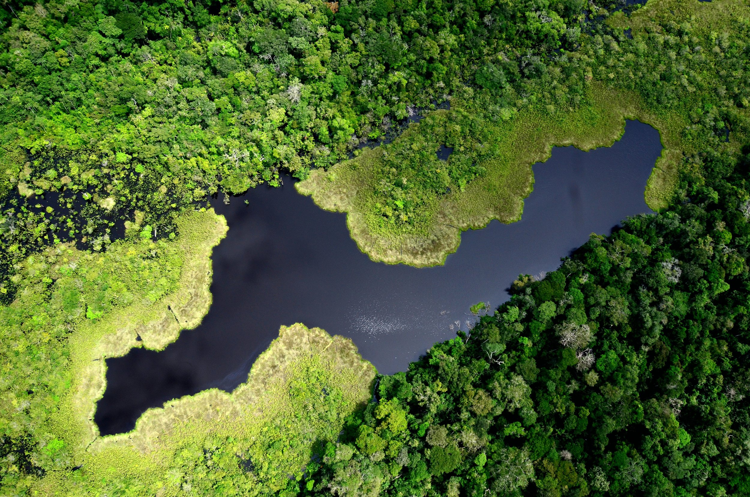 Yaguas National Park is one of the protected areas that the PdP will support.