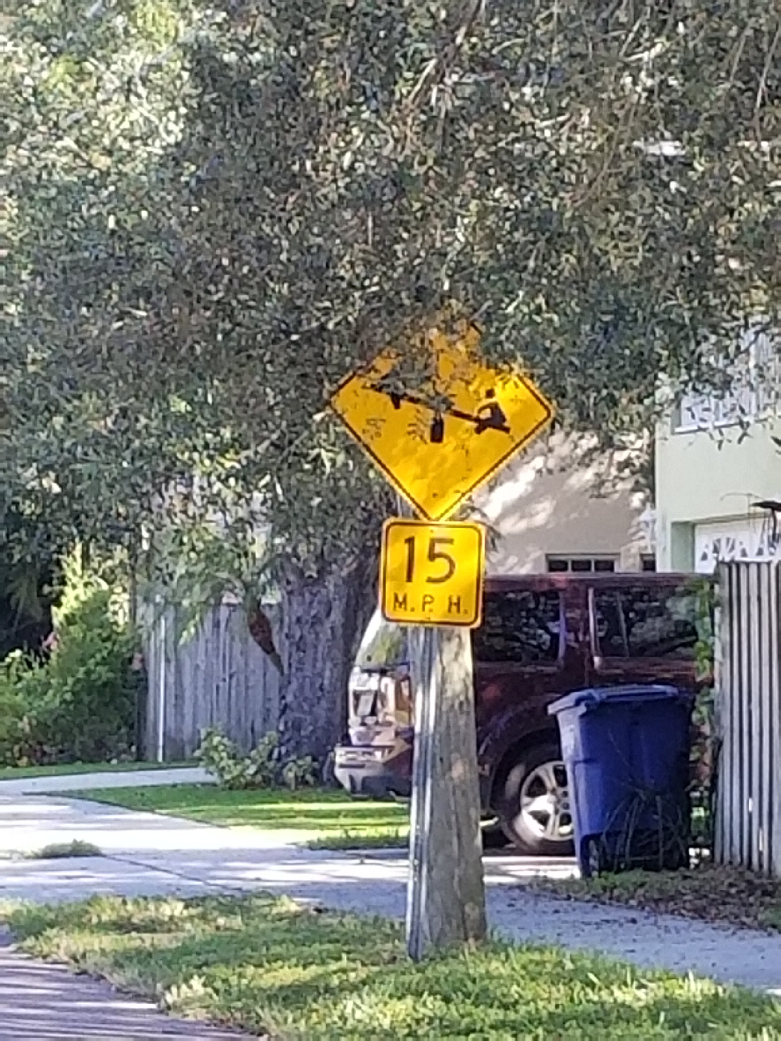 The City of Tampa says this sign, the only speed deterrent on Sterling Avenue, is not enforceable.