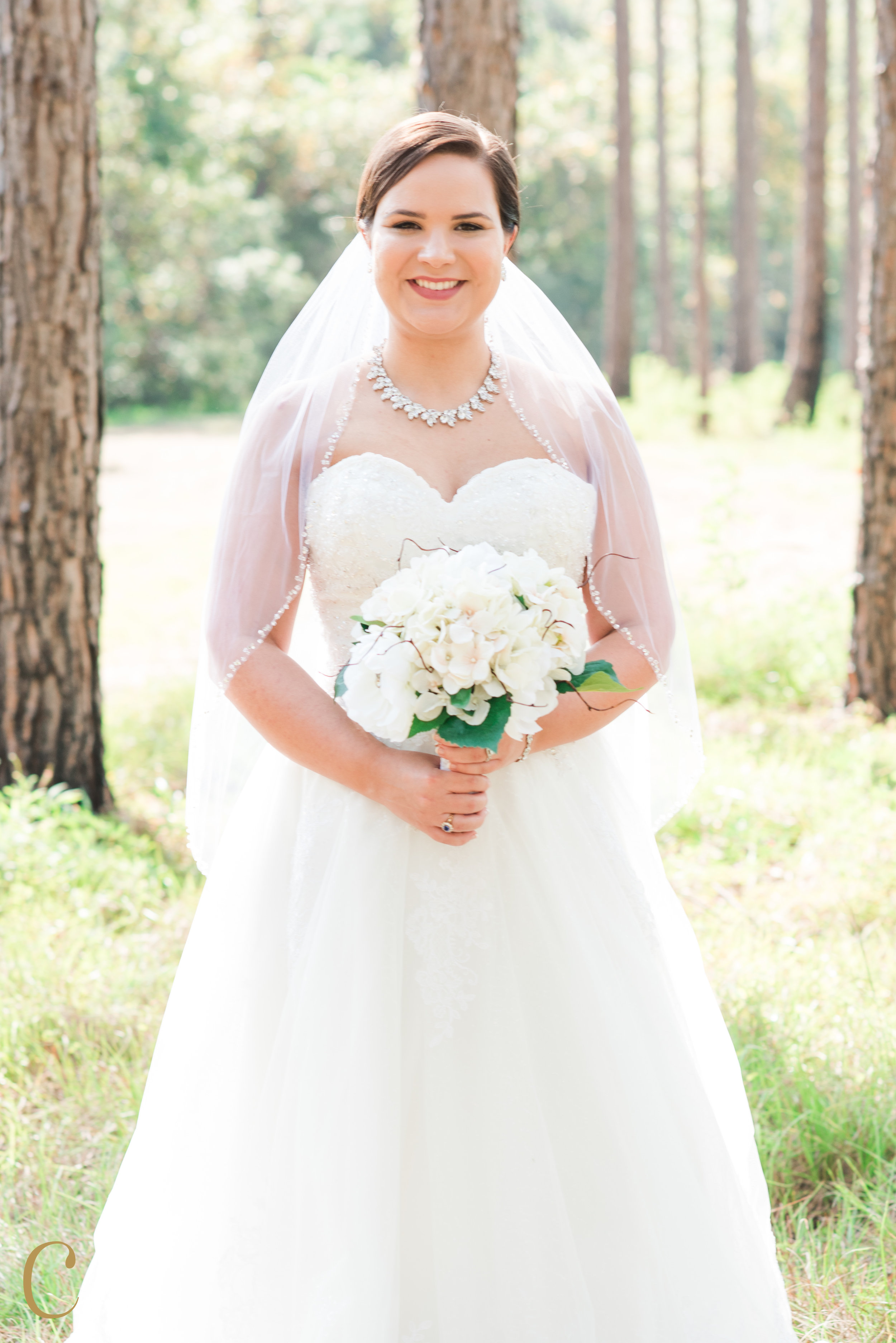 ©christineaustinphotography_jarred_hannah_wedding-3.jpg