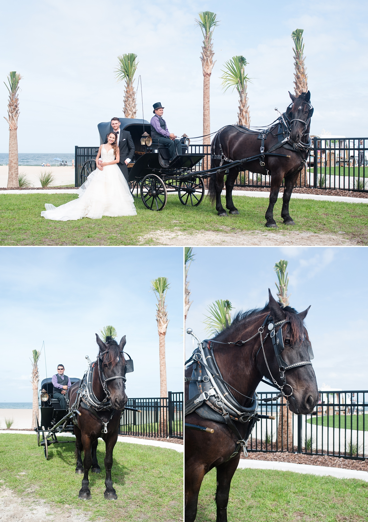 St Augustine Beach-Styled Wedding Fashion-Horse and Carriage-Wedding Dress Inspiration.jpg