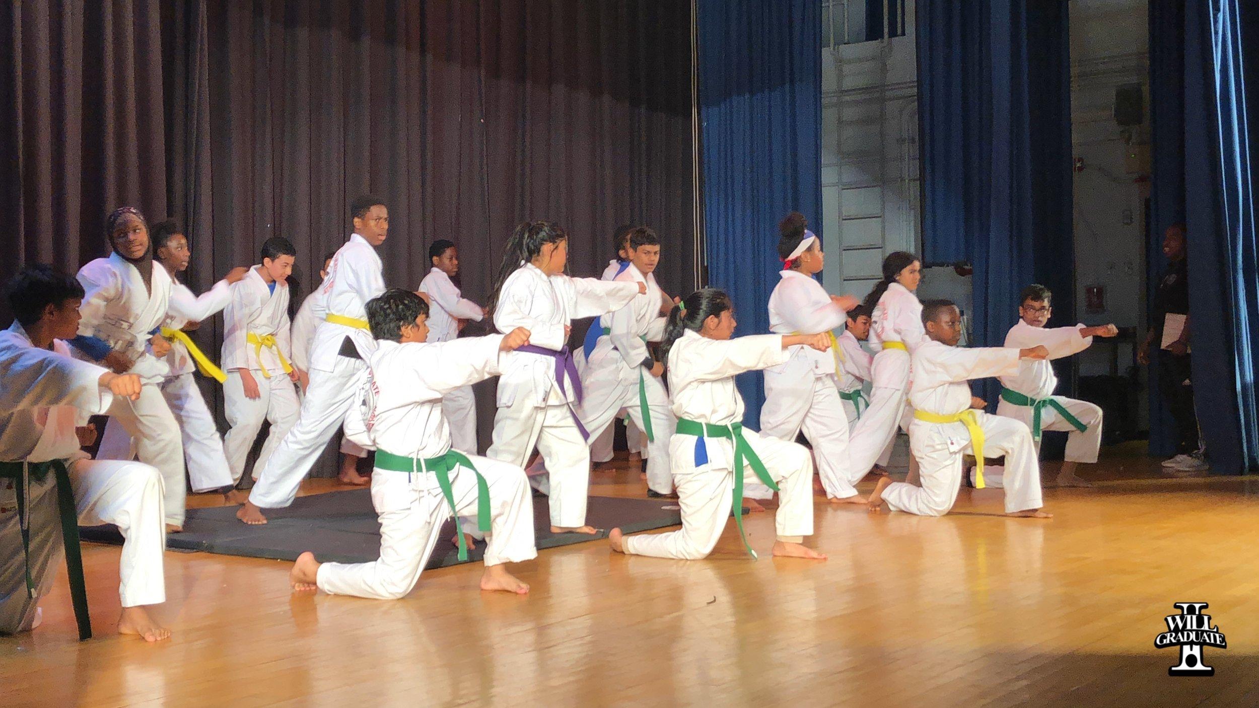 IWG Martial Arts MS 8.jpg