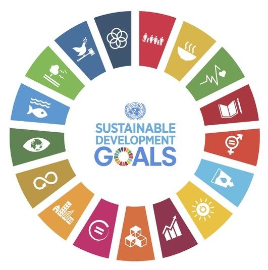 SDG-banner-2.jpeg