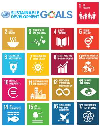 SDG-logo-icons.png
