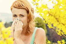 Reduce Allergies in Your Home By Reducing Dust