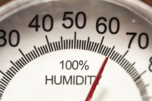 A Guide to Managing Humidity Levels by the Season