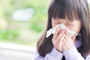 How to Combat Your Allergies with Your HVAC System