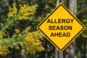 How to Prepare for Fall Allergens
