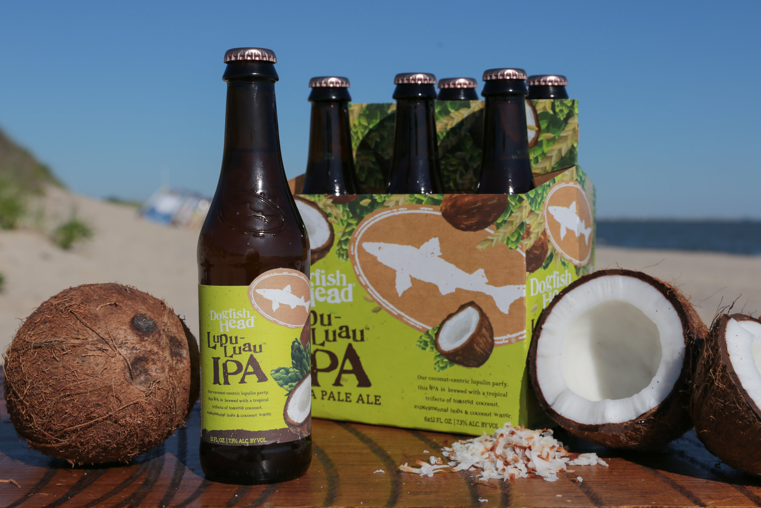 image courtesy Dogfish Head brewery