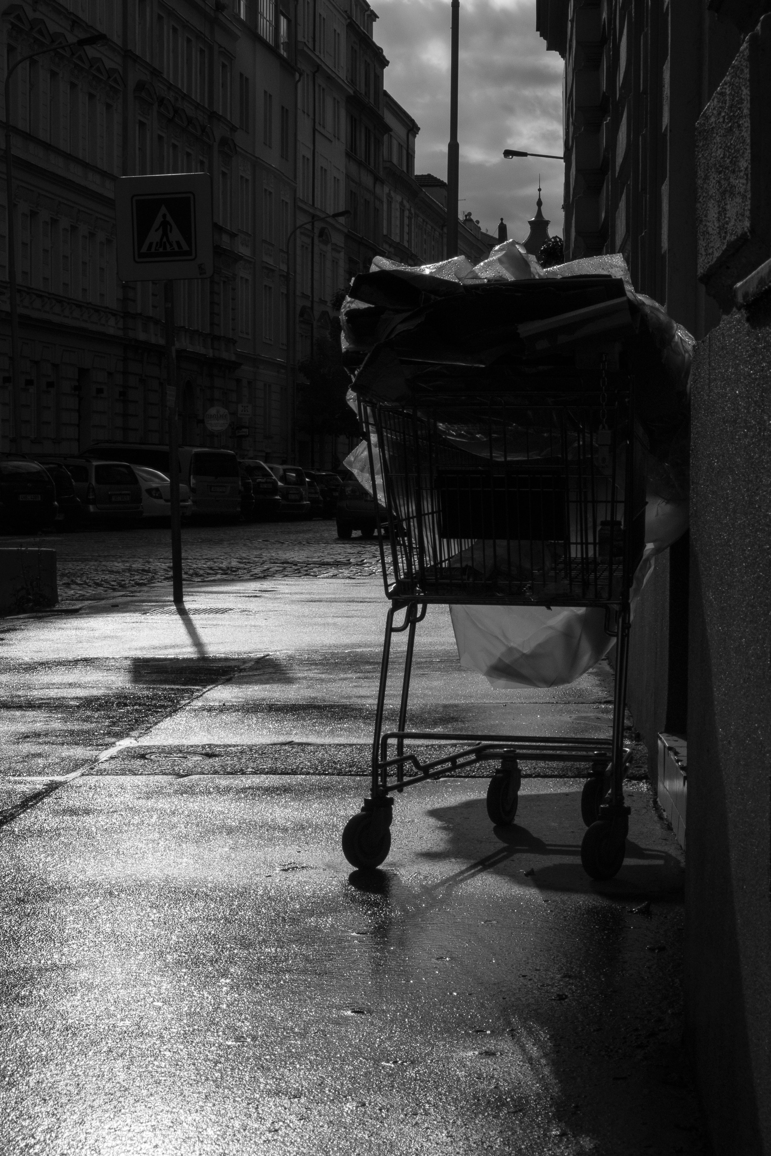 Shopping Cart, Prague