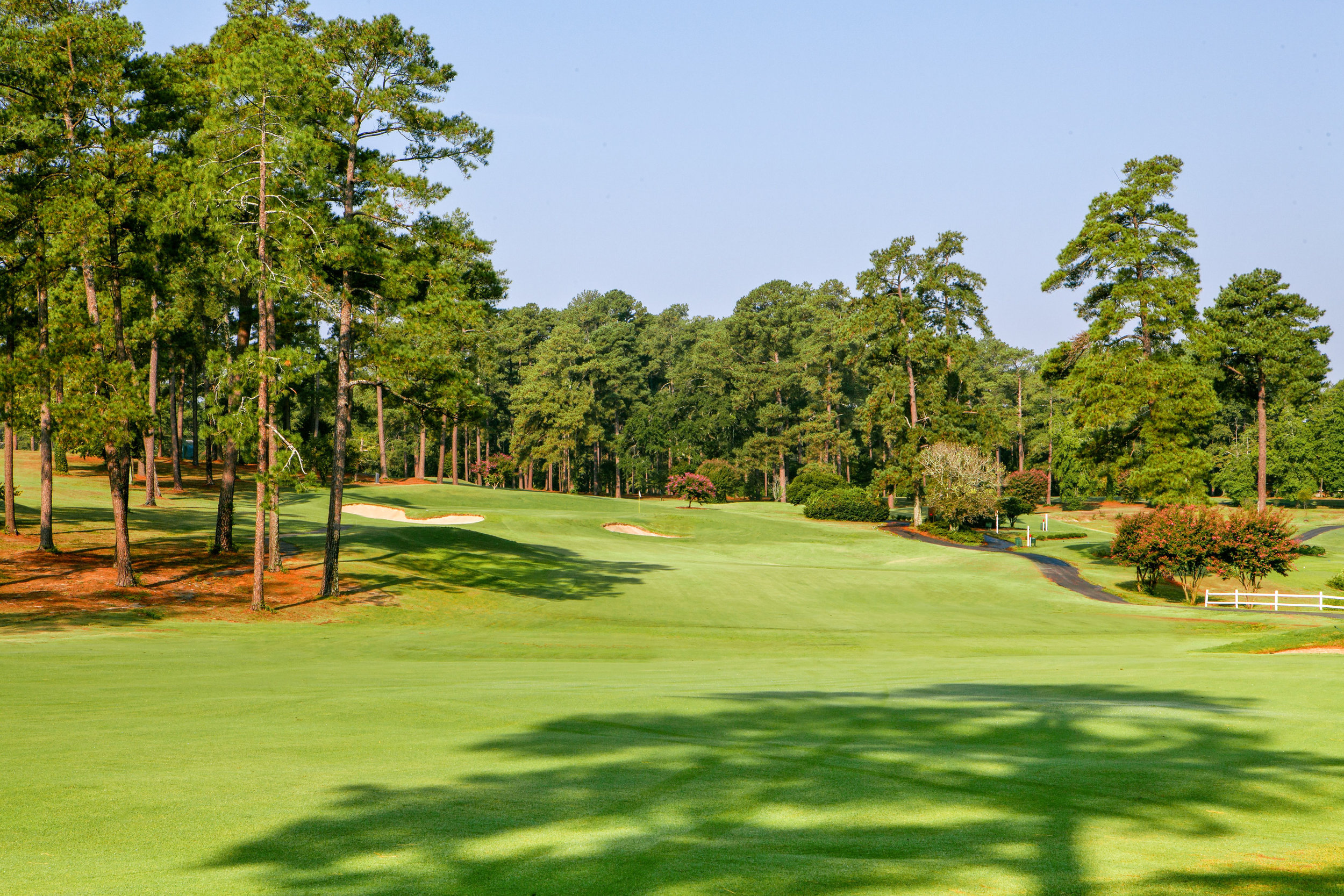 Forest Hills Golf Course 12.2.jpg