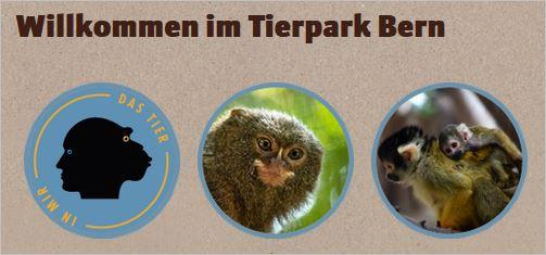 Tierpark.JPG