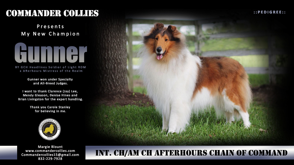 Gunners CH. win picture for Collies Online Published 8-5-2017commander_080517.jpg