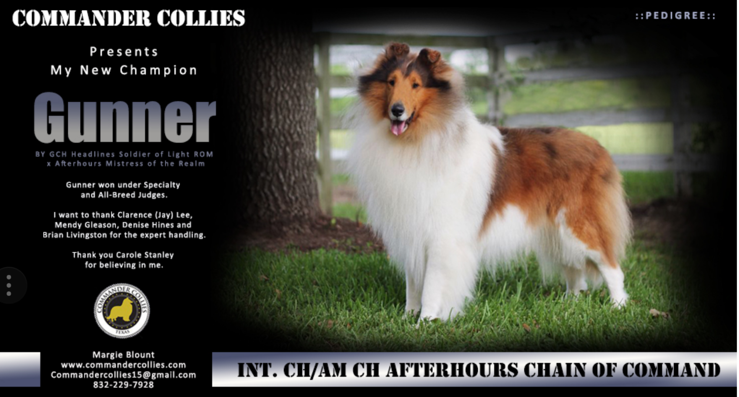 """IN CH/AM CH Afterhours Chain of Command    """"Gunner"""""""