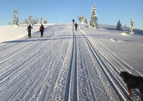 Flotte skiløyper på Blefjell