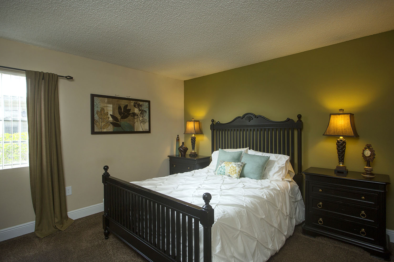 tampa-port_richey-apartment-one-bedroom-rental-two-bedroom.jpg