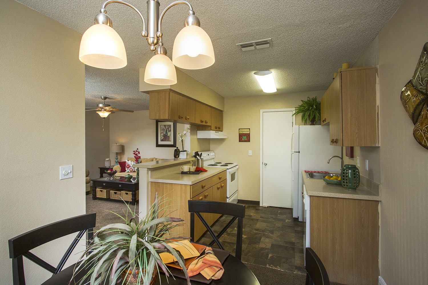 tampa-port_richey-apartment-one-bedroom-rental-two-interior-2.jpg