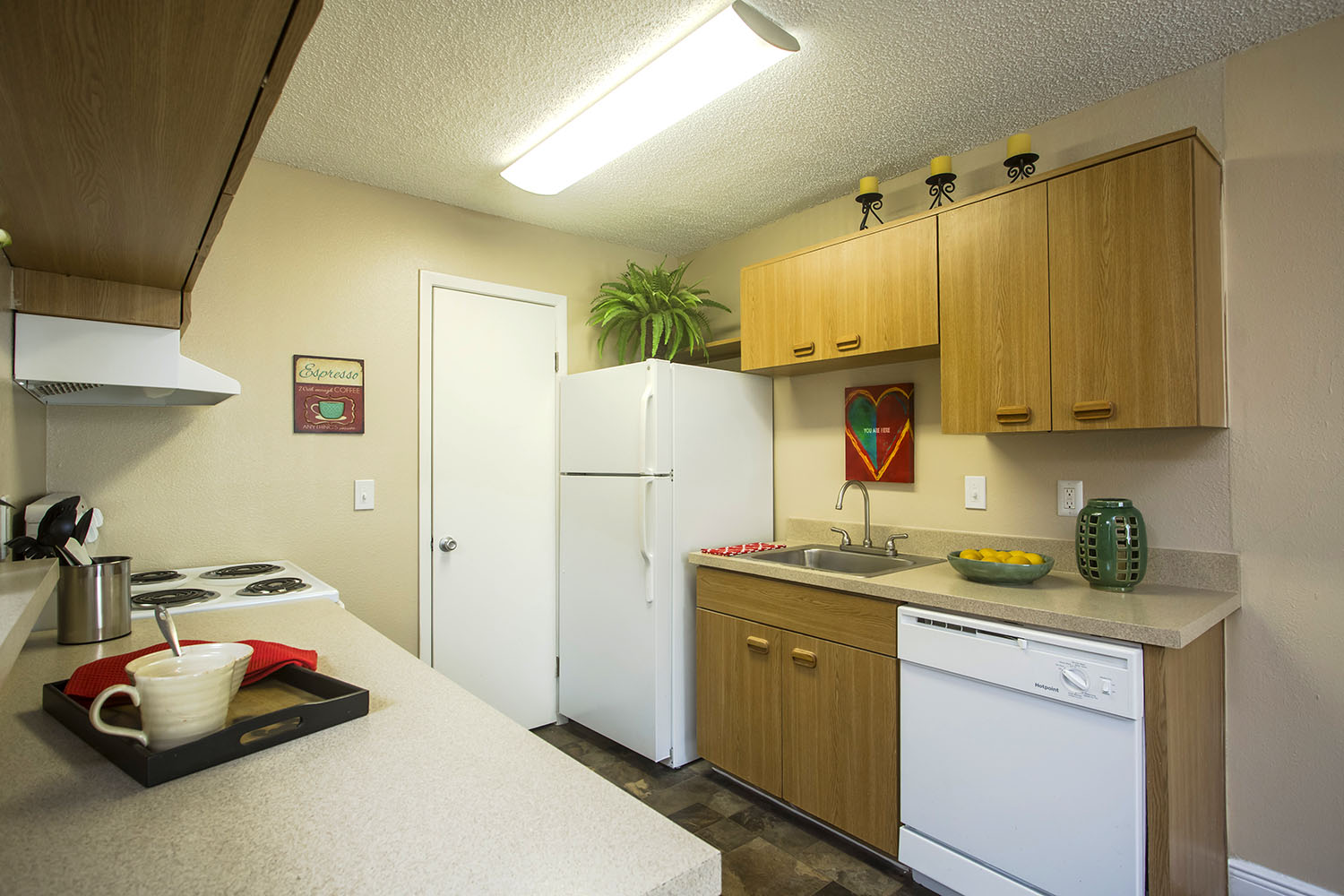 tampa-port_richey-apartment-one-bedroom-rental-two-kitchen.jpg
