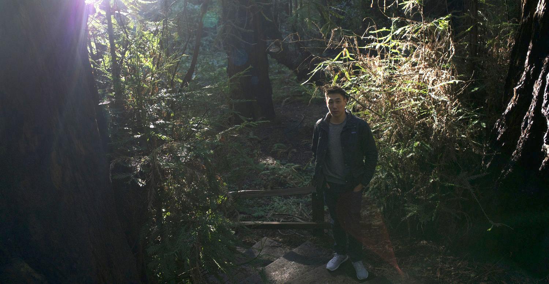 At Muir Woods