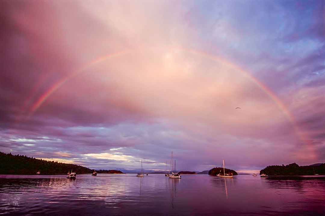 Sucia Island, Washington. Fuji Provia RDP 100f