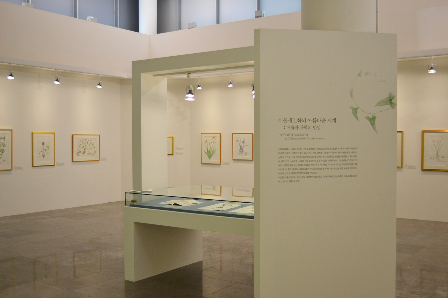Cheonggaecheon Museum. Exhibition of the Korean Society of Botanical Illustrators, The World of Botanical Art, A Collaboration of Art and Science. Courtesy Jee-Yeon Koo.