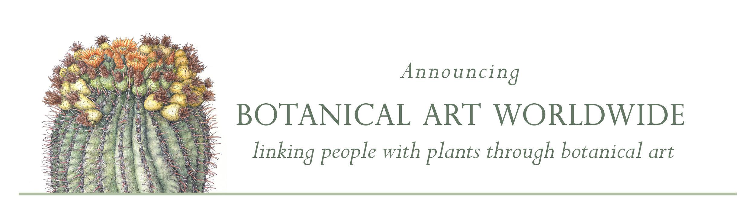 © 2013 Joan McGann, Arizona Barrel Cactus (detail)